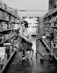 Audrey Hepburn is pictured shopping in Beverley Hills with her pet deer, 'Ip'