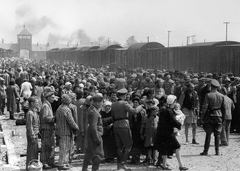 Hungarian Jews Being Selected By Nazis To Be Sent To The Gas Chamber At Auschwitz Concentration Camp