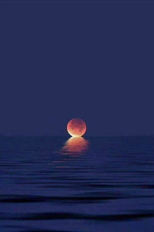 When the moon kisses the ocean ?