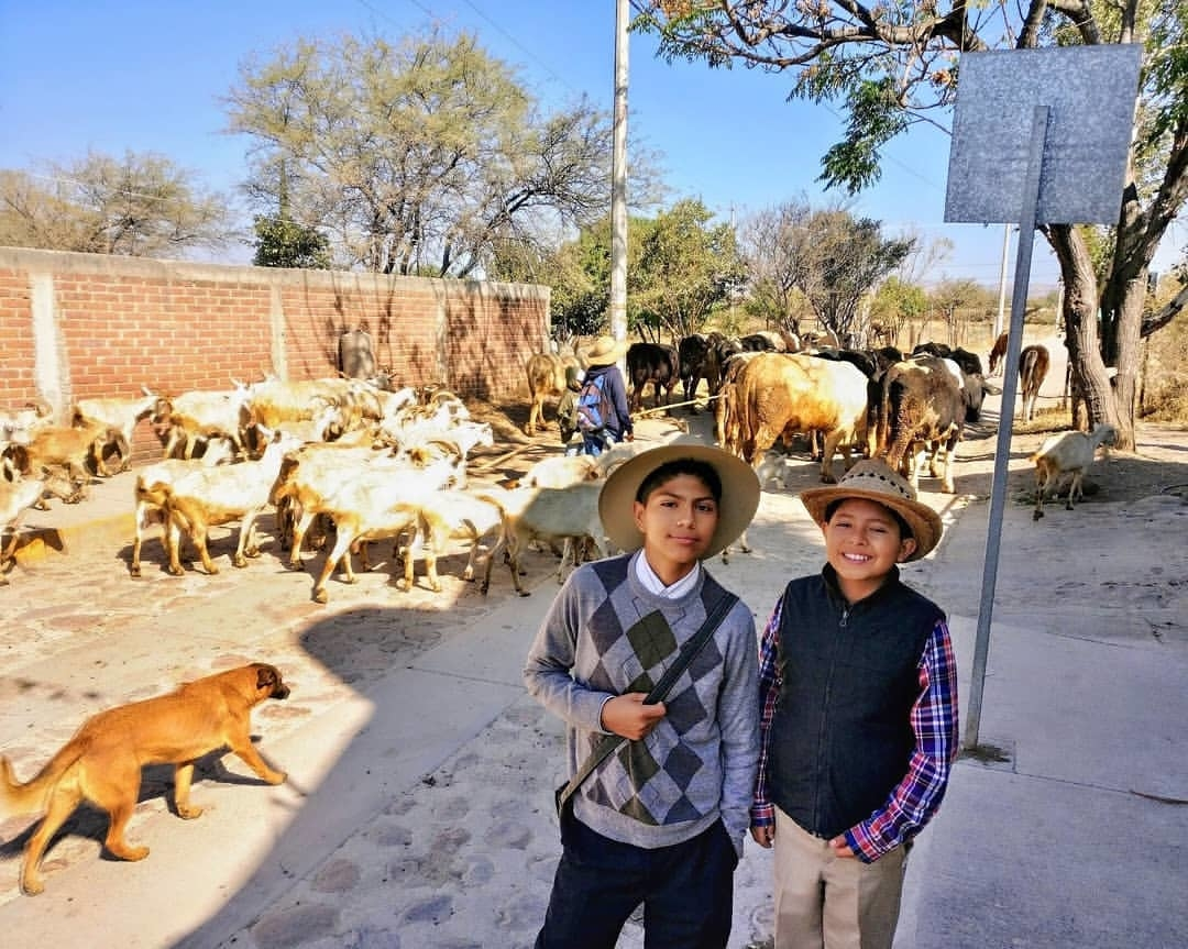 A typical day of witnessing in rural Mexico